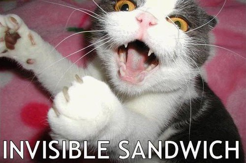 invisible sammich kitty