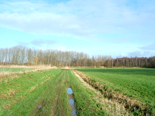 Track near the Zenne, Stuivenberg, Mechelen