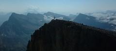 Cliffhanger (frogofpeace) Tags: cliff mountain mountains nature landscape rockies climb peak hike glacier alberta banff scramble banffnationalpark bowlake canadianrockies numtijahlodge numtijah mtthompson hectar