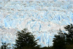 Perito Moreno Glacier - Los Glaciares National Park - Patagonia - Argentina ({ Planet Adventure }) Tags: patagonia holiday 20d ice southamerica argentina photography eos photo holidays photographer canon20d ab unesco adventure backpacking planet iwasthere peritomoreno lagoargentino canoneos naturalworld icebergs allrightsreserved worldheritage havingfun aroundtheworld copyright visittheworld ilovethisplace glaciallake travelphotos placesilove traveltheworld travelphotographs canonphotography alwaysbecapturing 20070107 worldtraveller planetadventure lovephotography theworldthroughmyeyes beautyissimple loveyourphotos theworldthroughmylenses shotingtheworld by{planetadventure} byalessandrobehling icanon icancanon canonrocks selftaughtphotographer phographyisart travellingisfun lostglaciaresnationalpark alessandrobehling copyrightc copyrightc20002007alessandroabehling copyright20002008alessandroabehling