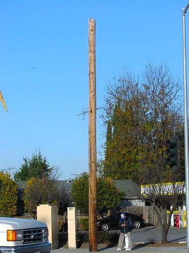 Futility pole