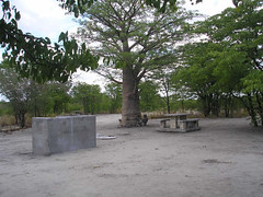 Spacious campsites at Nata Sanctuary.JPG