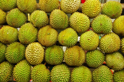 Thorny Green Things
