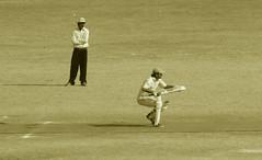 Cricket dilemma - by Khans