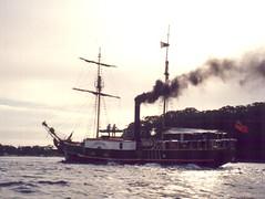 junk steamer 3
