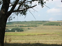 Moldovan countryside