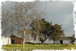 Fotografia original de Joaquim Castilho - http://www.flickr.com/photos/jcastilho/117696543/