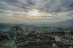 Dbut de l'hiver (Tophe54) Tags: hiver givre paysage brouillard hdr nikon d5300 bleu arbre vert gel soleil matin