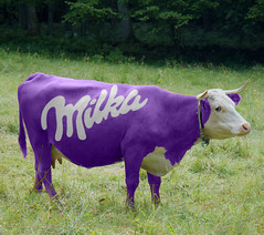 Purple cows rarely come from compromise
