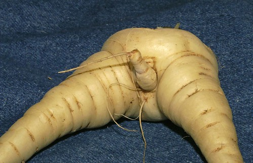 erotic pictures of fruits and vegetables jpg 422x640