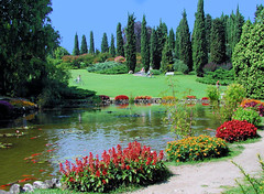 Pond in the Park (NatashaP) Tags: park italy water pond explore koi veneto naturesfinest sigurta interestingness5 specland challengeyouwinner superaplus aplusphoto favoritegarden superhearts photofaceoffwinner pfogold lifetravel