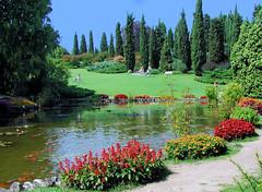 Pond in the Park (NatashaP) Tags: park italy water pond explore koi veneto naturesfinest sigurta interestingness5 specland challengeyouwinner favoritegarden superhearts photofaceoffwinner pfogold lifetravel