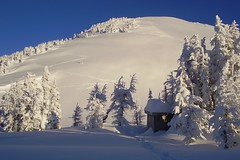 Jumbo pass, BC - just another day in the snow (xtremepeaks) Tags: christmas trees winter snow canada ski topf25 beautiful landscape cabin skiing bc snowy deleteme10 tracks deep powder hut backcountry outhouse snowfall storms interestingness9 jumbo jumbopass i500 abigfave trailpeak explore26dec06