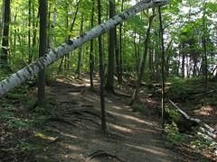 Kelso Hiking Sept 06 278 (travellingzenwolf) Tags: hiking kelso escarpment zenwolf