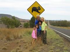 Koalas Ahead