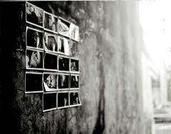 graffoto (TommyOshima) Tags: monochrome japan polaroid tokyo 4x5 type55 graflex ektar 127mm speedgraphics