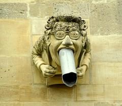 Gargoyle waterspout (lovestruck.) Tags: cathedral pipe drain gargoyle drainpipe chichester chichestercathedral challengeyouwinner pentaxk10d