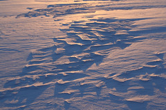 drifting patterns at sunrise (withrow) Tags: winter snow canada sunrise alberta drifts lakesurface