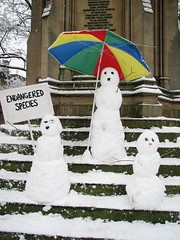 Endangered Species (Lawrence OP) Tags: snow humour oxford snowmen species endangered impressedbeauty 8feb2007