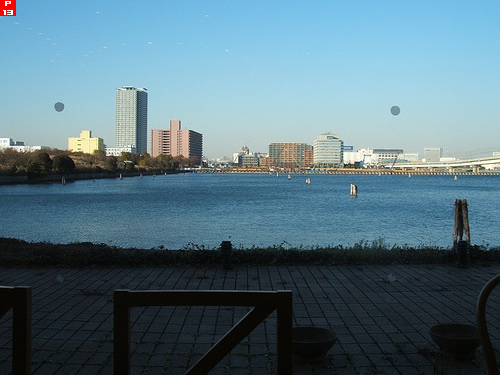 東京辰巳国際水泳場横の運河