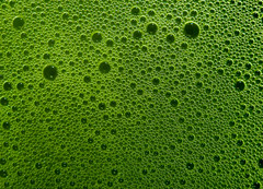 (Jon. Ellis) Tags: green tea bubbles foam maccha   mmblog matchastore