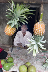 Man with Pineapples in Zanzibar - by DavidDennisPhotos.com