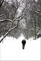 Walk Out To Winter (Rod Monkey) Tags: winter snow poland polska warsaw warszawa interestingness12 i500 outstandingshots azienkipark rodirvine