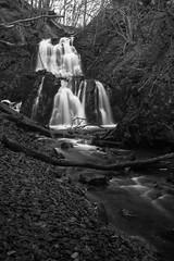 Waterfall (karl.b) Tags: waterfall winter winterforrest trees water river creec nikond610 nikon28300 monochrome blackandwhite soft beautiful outdoor nopeople