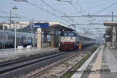 E444 099 Tartaruga (luciano.deruvo) Tags: tartaruga e444099 icn trenitalia rfi fs milanolecce puglia italia bari