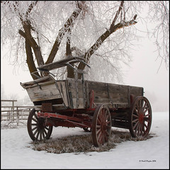 Wagon - wagon markapayton markpayton snow payton winter mark missoula frost fog wheel group