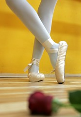 Ballet class (take 2) (ido1) Tags: red ballet feet rose yellow israel legs