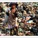 Supervivència a Cambotja