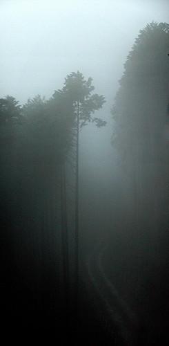 Misty Okutama
