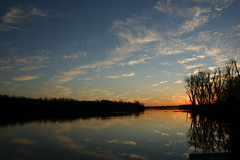 Clouds In The Water ⅩⅧ (mightyquinninwky) Tags: trees sky water clouds reflections evening december kentucky lexingtonky richmondroad fayettecounty centralkentucky ellserlielake