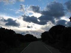 Road to Perdition (Stranju) Tags: road sardegna italy clouds roadtoperdition strada italia nuvole sardinia cielo fiori terra pau ales campidano marmilla canonpowershots3is stranju morgongiori montearci withcanonican pianche sarerranostra