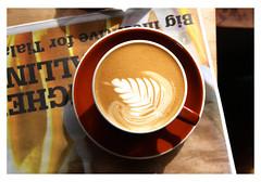 Peoples Coffee, Newtown, Wellington