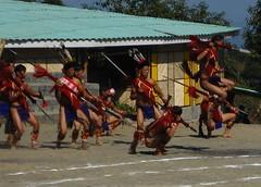 war dance (dibopics) Tags: india festival tribal assam hornbill kohima nagaland dances dimapur dibopics angami hornbillfestival chakhesang rengma pochury