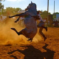 Bailando a los saltos - by Eduardo Amorim