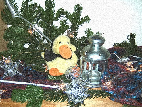 Quack Dec 2006 013