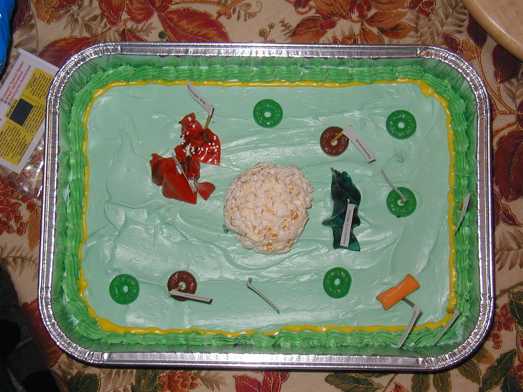 Famous plant cell model project ideas photos garden and lovely plant cell model project ideas photos garden and pooptronica Images