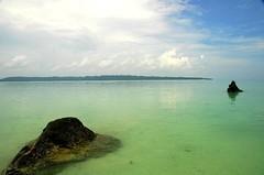 Havelock Island, Andamans (Ashit Desai) Tags: sea india beautiful island asia most barefoot beaches havelock wildorchid andamans andamanislands beautifulbeaches andamannicobar portblair radhanagarbeach havelockisland ashitdesai