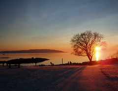Bygdy (sta) Tags: ocean blue sunset sea sky tree beach silhouette oslo norway strand golden norge bravo purple himmel tre oslofjord oslofjorden hav solnedgang bygdy huk bl sj purpur svaberg silhuetter abigfave gyllen