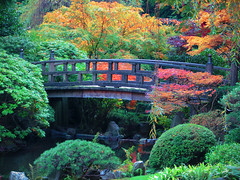 Garden Bridge (Gigapic) Tags: bridge usa moon oregon garden portland japanese unitedstates japanesegardens interestingness68 a cy2 challengeyouwinner superhearts