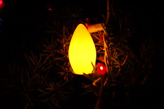 Yellow light Christmas style (lowlight168) Tags: christmas snow 50mm lights globe nikon dslr lowlight168