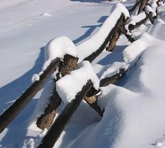 The Old Fence (Sandra Leidholdt) Tags: schnee winter usa snow america fence golden us vinter colorado unitedstates hiver nieve sneeuw rustic explore american fourseasons neve invierno neige inverno amricain jeffersoncounty sandraleidholdt leidholdt sandyleidholdt