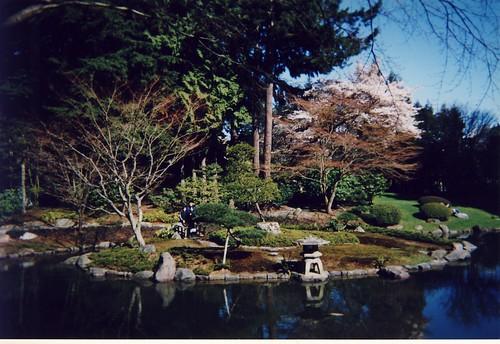 Nitobe garden