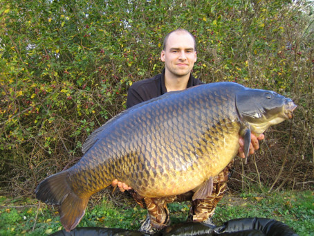 common carp. Ex - World record common carp
