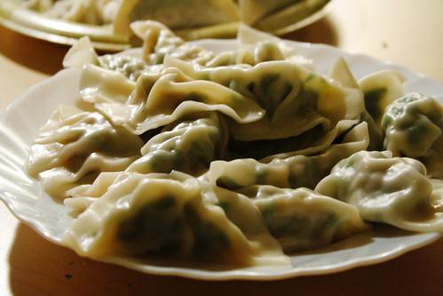 plate of boiled dumplings