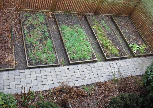 vegetable garden jan 15, 2007