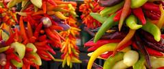 fiery (cyprisvii) Tags: seattle usa pepper washington farmersmarket garland wa pikeplacemarket colourful